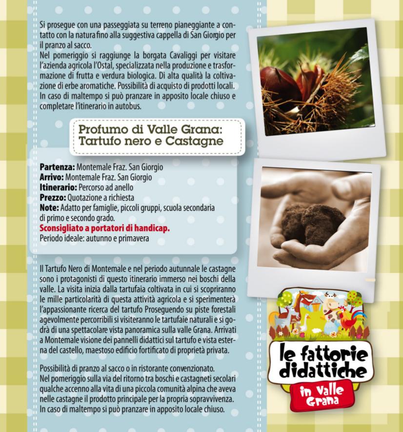 Fattoria didattica5