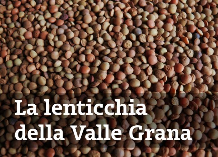 lenticchie_z01
